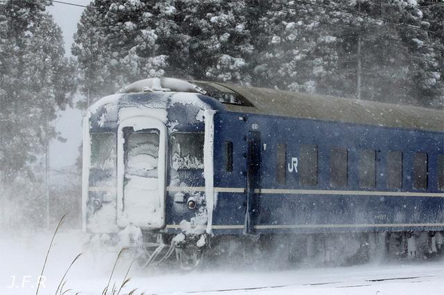 20111218nihonkai2