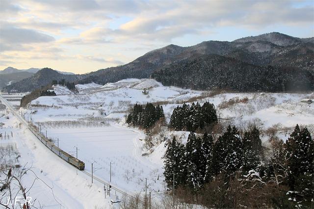 20120119nihonkaigou
