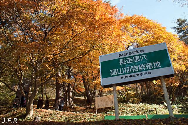 Fuuketsu