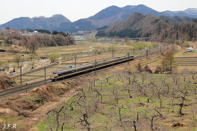 20120428sakuramatsurigou