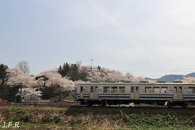 20120501daibutsu